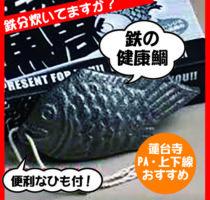 蓮台寺PA上下線・鉄の健康鯛!